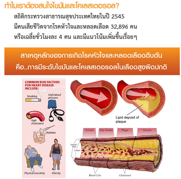 Protect hrt-heart disease