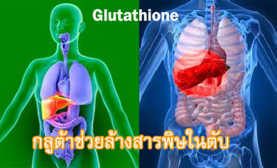 Glutathione-cleanse-liver