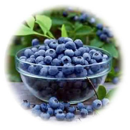 billberry-gel