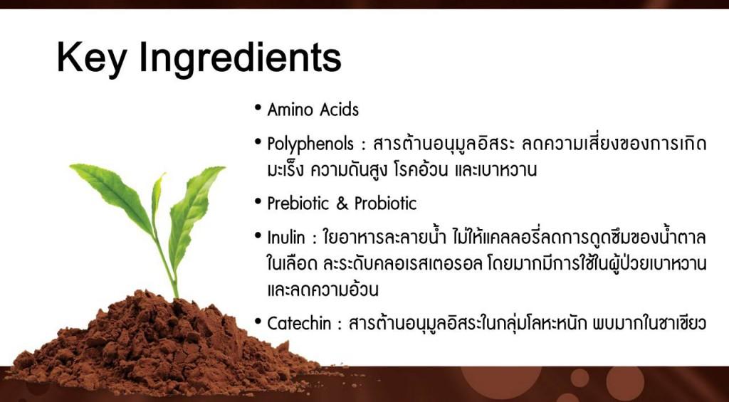 ส่วนประกอบสำคัญของเอเจล โปรตีน
