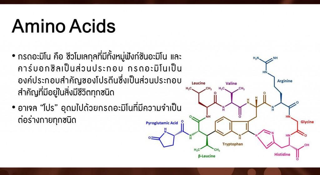 อาเจลโปร อุดมไปด้วย Amino acids กรดอะมีโน