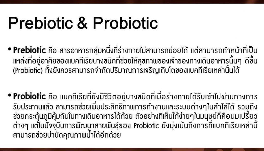 prebiotic & probiotic เป็นตัวสร้างชีวิต และการทำงานของร่างกาย