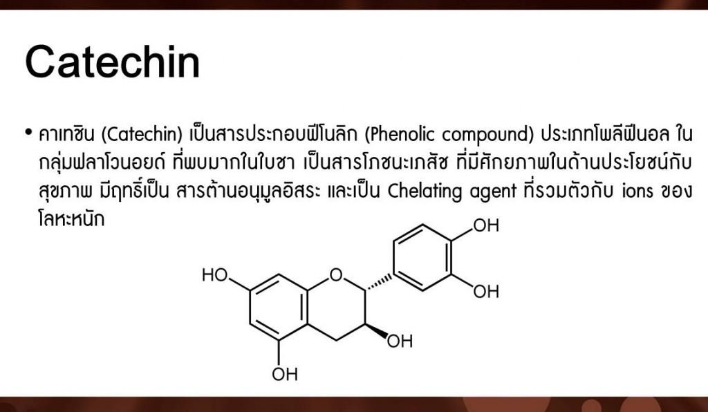 catechin คาเทชิน สารประกอบฟีโนลิก ต้านอนุมูลอิสระ