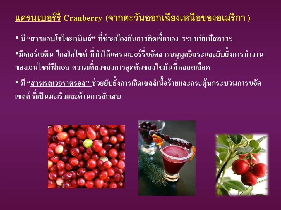cranberry แครนเบอร์รี่ ผลไม้ต้านอนุมูลอิสระ