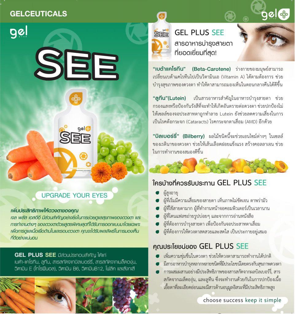 Gel Plus Tool_๑๙๐๖๐๔_0058