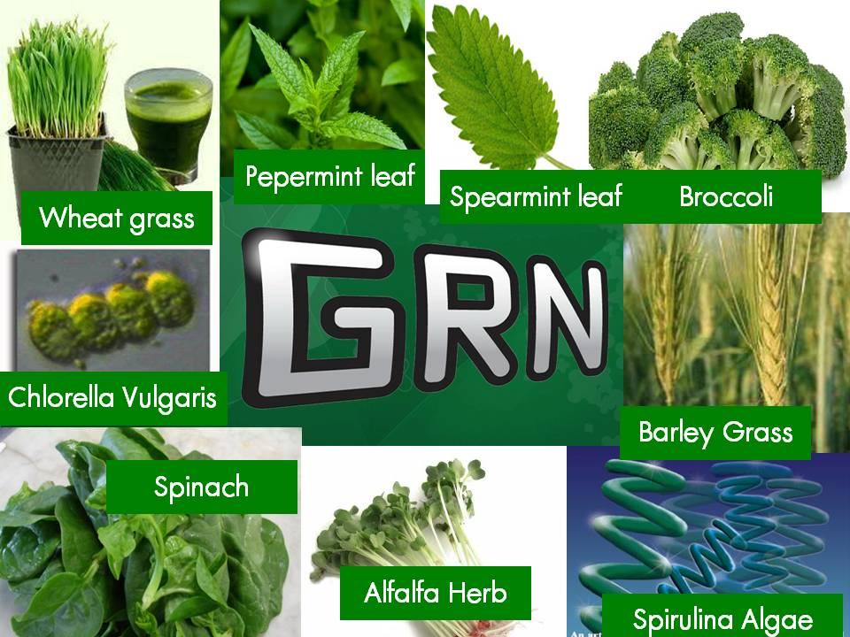 agel-GRN-combine